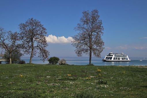 Lake, Sunny, Quiet, Light, Beach, Picnic, Tour, Rest