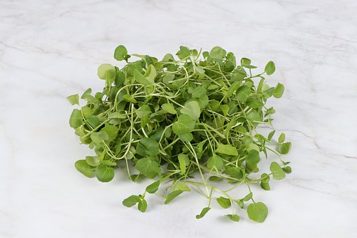 Watercress, Crazy La, Cresson, Water And, Vegetables