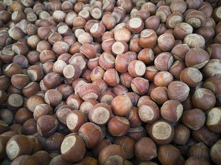 Hazelnut, Dried Fruits And Nuts, Shelled, Macro