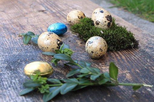Egg, Eggs, Easter, Easter Eggs, Colored, Spring