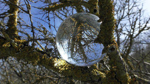 Glass Ball, Ball, Ball Photo, Glass, Crystal Ball