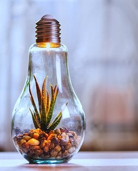 Environmental Protection, Nature, Light Bulb, Light