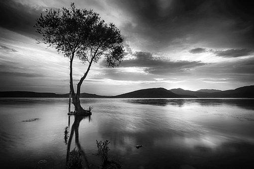 Black White, Lake, Landscape, Trees, Clouds, River