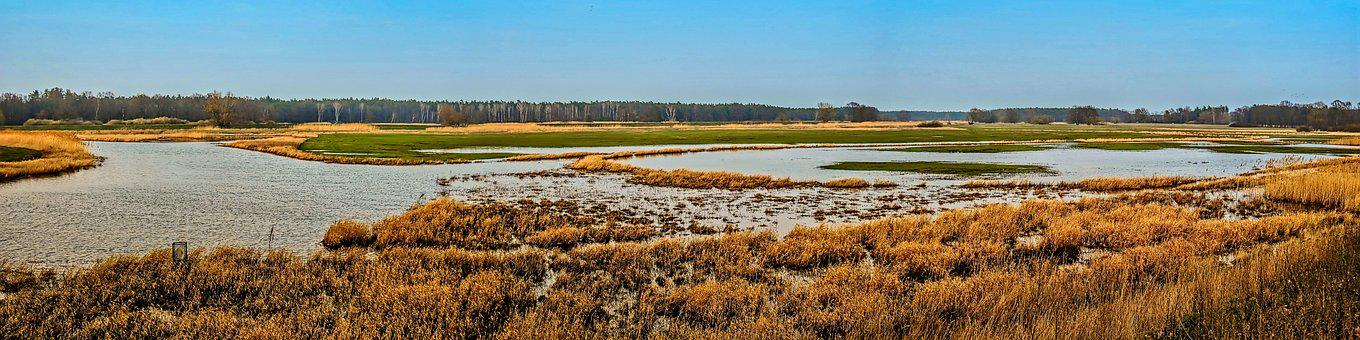 Panorama, River Landscape, River, Flood, Waters