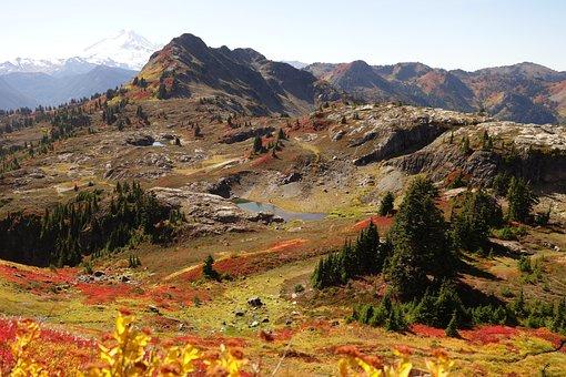 Fall Colors, Autumn, Mountains, North Cascades