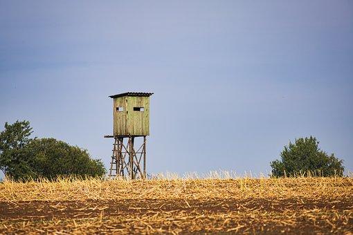 Jägertstand, Field, Glean, Agriculture, Yellow, Nature