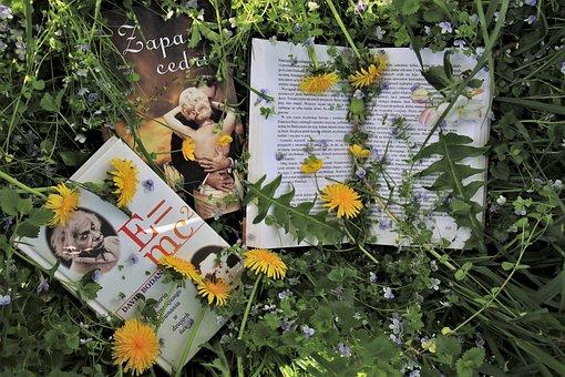 In The Garden, Relaxation, Ksìążki, Reading, Meadow