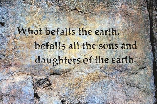 Befall The Earth Quote, Rock Wall, Earth Quote, Texture