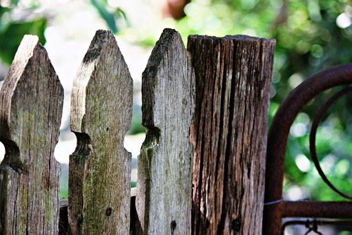 Garden, Fence, Timber, Old, Gate, Wooden, Wood, Rustic