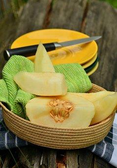 Cantaloupe, Melon, Amarillo, Muskmelon, Fruit, Arranged