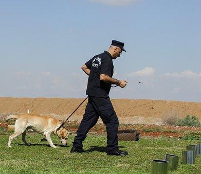 Police Dog, Training, Dog, Police, Animal, Officer