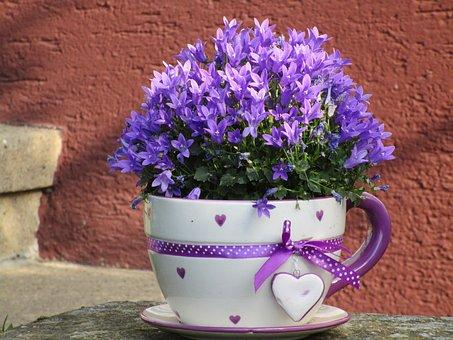 Flowerpot, Cup, Flowers, Purple, Violet, Heart, Deco