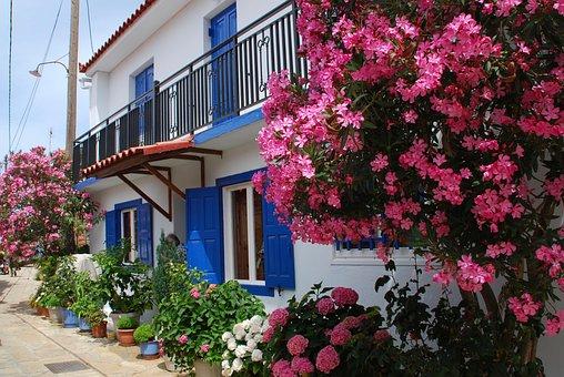 Samos, Oleander, Greece, Window, Facade, Shutters, Blue