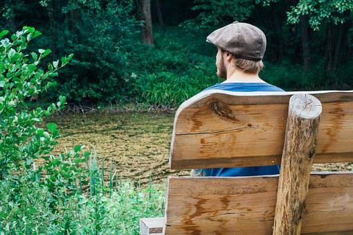 Bench, Man, Back View, Sorrow, Pond, Nature, Silence