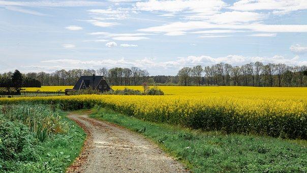 Landscape, House, Nature, Rural, Architecture, Hut