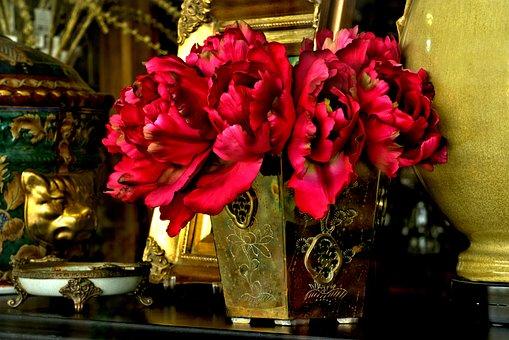 Still Life, Window Display, Flowers, Red, Arrangement