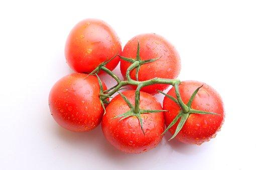 Tomato, Tomatoes, Red, Sprig, Fresh, Foliage