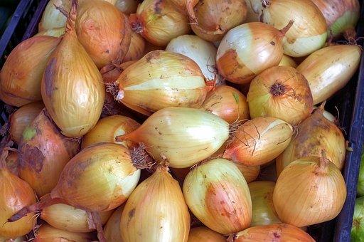 Farmers Market Onions, Food, Onion, Market, Nutrition