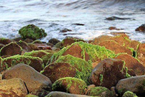 Sea, Stones, Ocean, Coast, Beach, Landscape, Blue, Rock