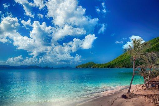 Beach, Tropical, Palms, Sky, Clouds, Sand, Holiday