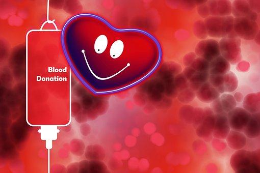 Blood Donation, Blood, Unit Of Blood, Health, Live