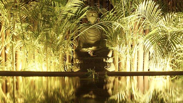 Pool, Buddha, Vegetation, Plants