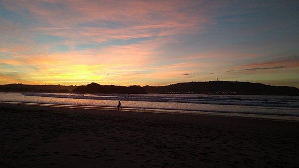 Beach, Sun, Blue, Red, Can, Dog, Cantabria, Playa