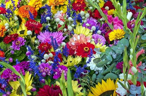 Dane County Market Flowers, Sunflowers, Flowers