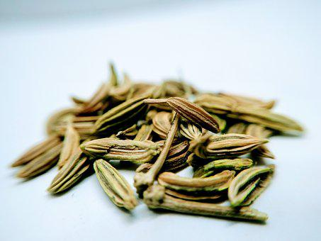 Aniseed Fennel, Spices, Food