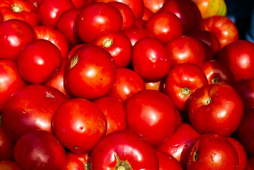 Tomatoes, Red, Food, Vegetables, Fresh, Healthy, Ripe