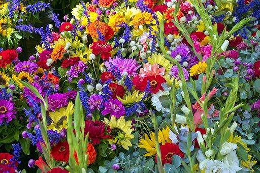 Madison Farm Market Flowers, Sunflowers, Flowers