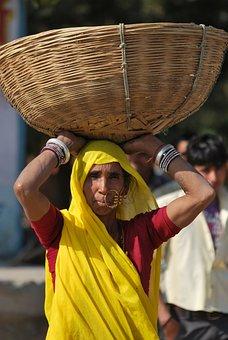 Villager, Woman, Basket, Village Scene, Cultural, India