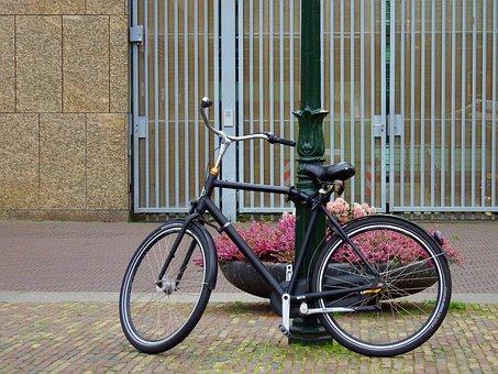 Bicycle, Lights, Bike, Cycling, Street, Pedestrian