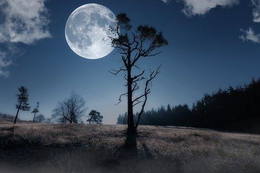 Moon, Night Sky, Moonlight, Full Moon, Night, Composing