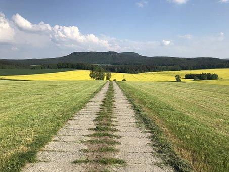 Away, Nature, Path, Landscape, Hiking, Scenic, Field