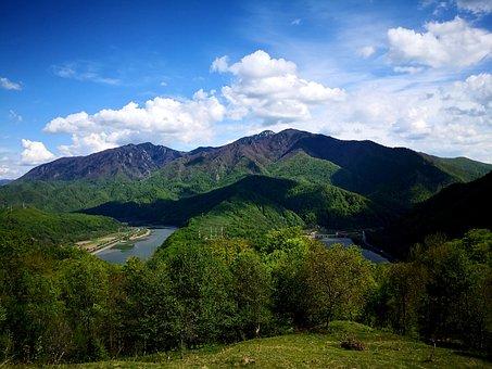 Valea Oltului, Oltenia, Olt, Romania, Mountain, Nature