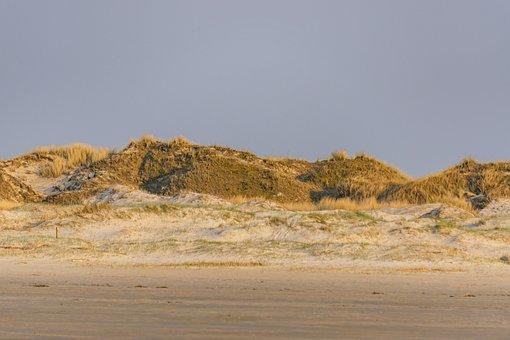 Sea, Beach, Sand, Summer, Vacations, Water, Ocean