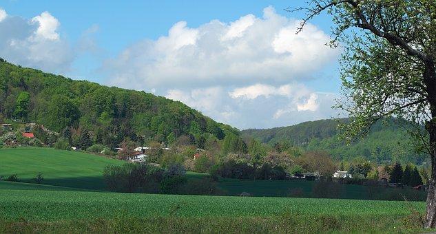 Landscape, Gardens, Fields, Forest, Spring, Growth