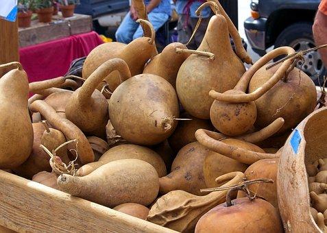 Market Hard Gourds, Harvest, Gourds, Vegetables, Market