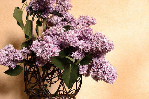Lilac, Lilac Bouquet, Bouquet, Lilac Branches, Basket
