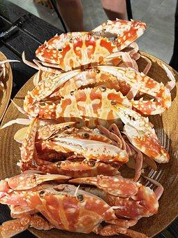 Flower Crab, Seafood, Shell, Shellfish, Ocean, Food