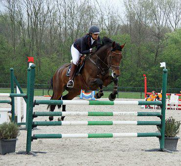 Horseback Riding, Jump, Obstacle, Contest, Sports