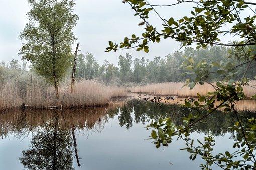 Schwalm Break, Lake, Water, Nature, Landscape, Sky