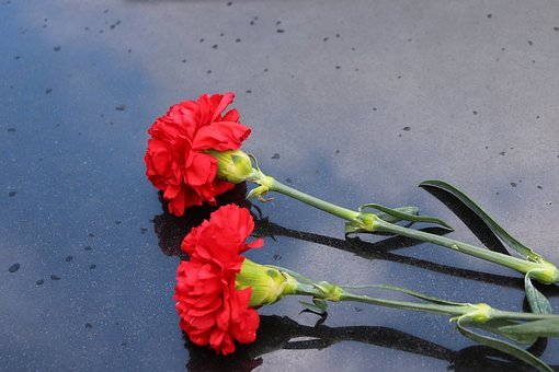 Two Red Carnations, Black Marble, Symbol, Decoration