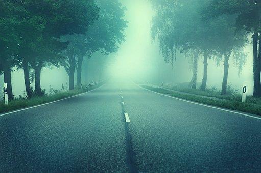 Road, Trees, Fog, Asphalt, Lonely, Empty, Fog Bank
