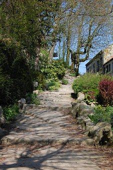 Cassel, Trail, Lane, Staircase, Flowers, Trees