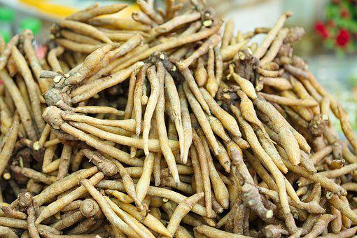 Finger Roots, Root, Food, Herb, Herbal, Asia, Nature