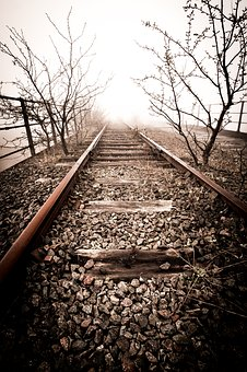 Abandoned Railway, Sepia, Castleford, Yorkshire, Nature