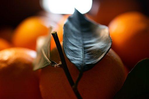 Orange, Fruit, Eat, Fresh, Healthy, Vitamins, Food