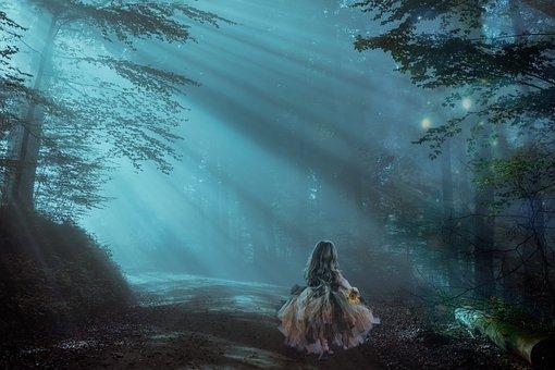 Forest, Night, Fantasy, Trees, Light, Mystery, Mystic
